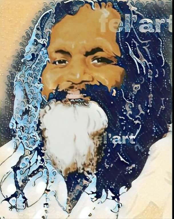 digital maharishi